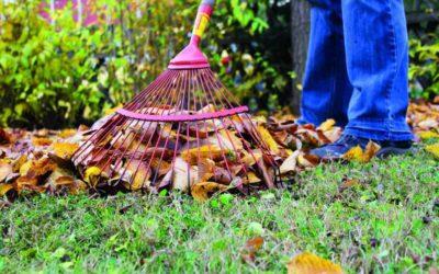 Garten im Herbst: So kompostieren Sie Gartenabfälle
