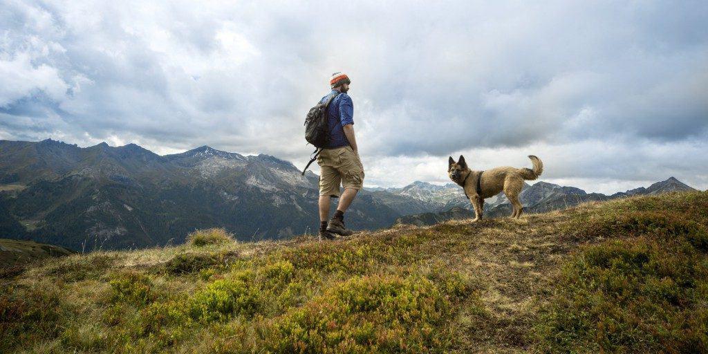Wanderer mit Hund in den Bergen
