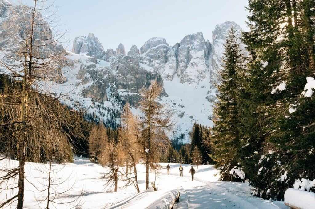 Drei Wanderer laufen vor einer beeindruckenden Bergkulisse einen verschneiten Weg entlang, gesäumt von schneebedeckten Bäumen.