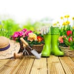 Start in die Gartenzeit: Blumenbeete anlegen