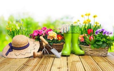 Start in die Gartenzeit: Blumenbeete anlegen