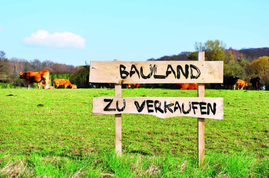 Ein grüne Koppel mit Kühen wird durch ein rustikales Holzschild als Baugrundstück zum Kauf angeboten.