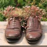 Garten-Deko: braune Leder-Schuhe mit Blumen bepflanzt.