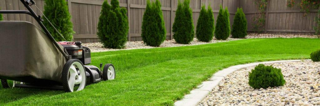 Mähen ist das A und O bei der Rasenpflege.