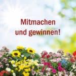 Gewinnspiel: Zeigt uns Eure Lieblingsblume aus Eurem Garten.