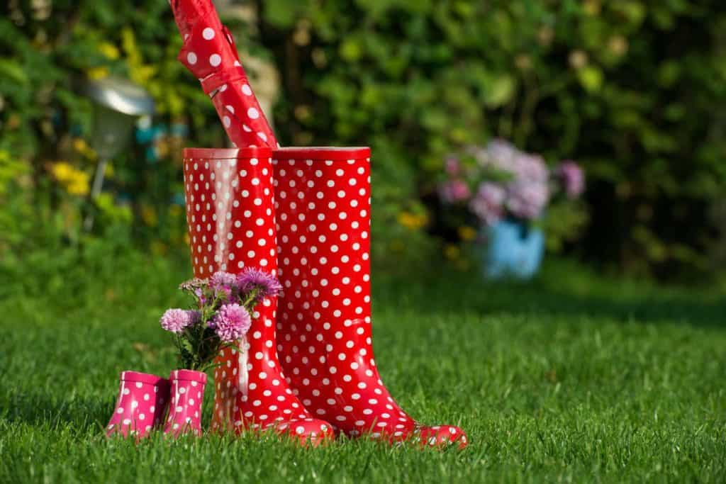 Große und kleine Gummistiefel rot mit weißen Punkten auf dem Rasen.