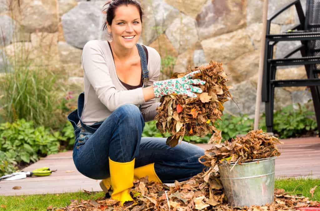 Flächenkompostierung und das Laub ist schnell weg