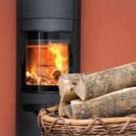 Brennholz für den Kamin: Die fünf besten Sorten