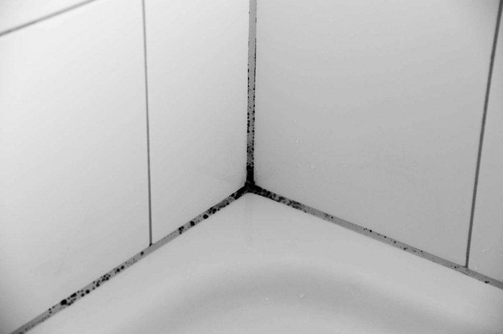 Silikonfugen mit Schimmelbefall am Duschrand. Schimmel im Bad