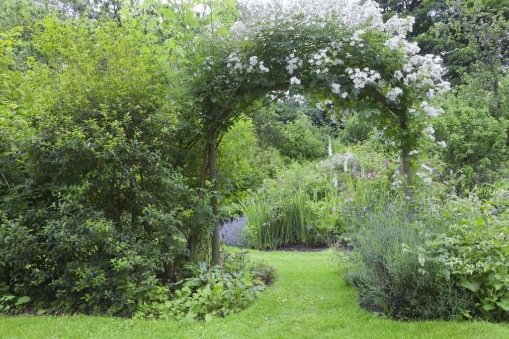 Rosenbogen zwischen Blumenstauden – Cottage Gärten