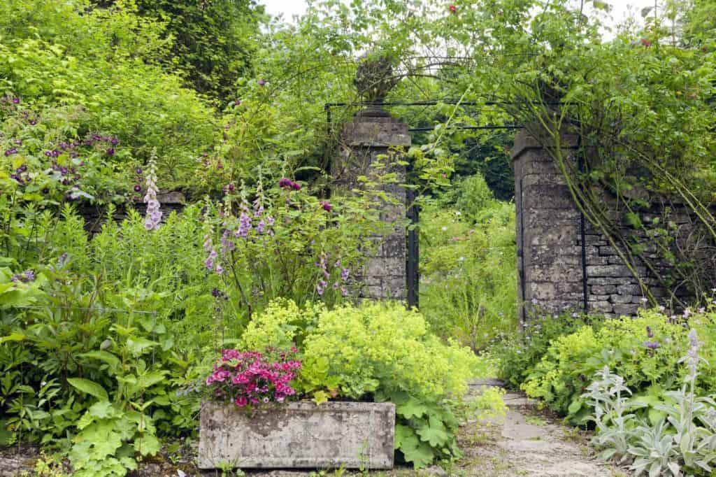 Cottage Gärten: Eingewachsene Steinmauer mit Tor, Pflanzkübel aus Stein und wildwachsende Stauden