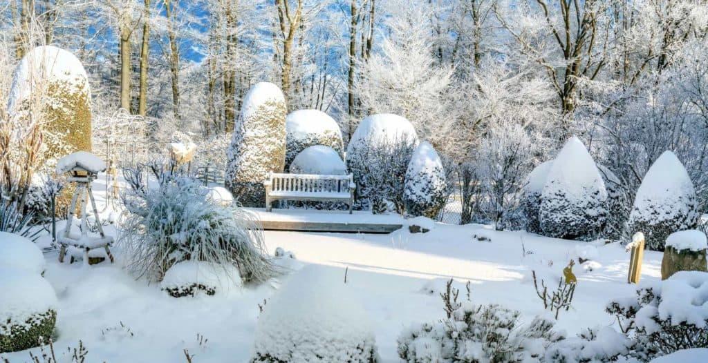 Winterruhe im Garten: Schneedecke auf Bank, Vogelhaus, Bäumen und Gräsern.