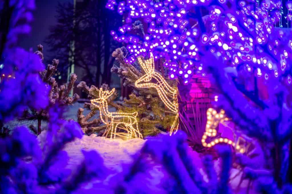 LED-Rentiere und Lichterketten am Baum im Schneegarten (Weihnachtsdeko am Haus)