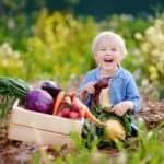Beobachten, buddeln, naschen – tolle Ideen für ein kunterbuntes Kinderbeet