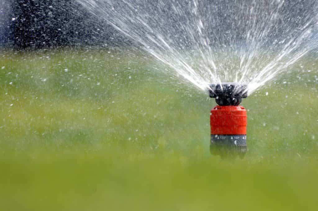 Garten wird gewässert mit Rasensprenger (Garten bei Trockenheit)