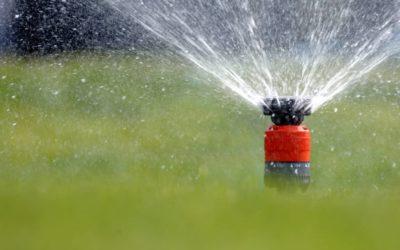 Wie wird der Garten bei Trockenheit richtig bewässert?