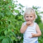 Ein kindgerechter Garten: Darauf sollten Sie achten, um den Garten kindersicher zu gestalten.