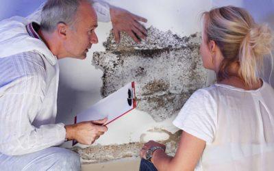 Kellerraum-Sanierung: Grundmauerschutz für die nächsten 100 Jahre