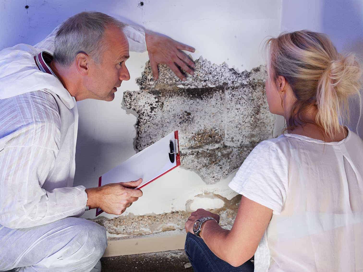Fachhandwerker und Frau vor einer verschimmelten Wand im Kellerraum.